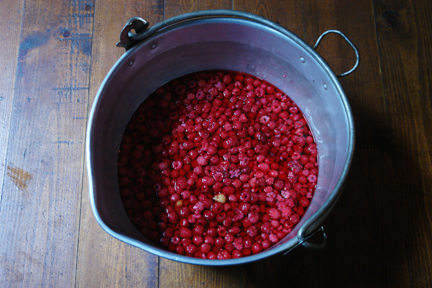 vintage jam pan full of wild raspberries