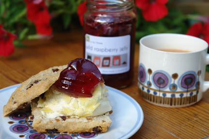 scone with wild raspberry jelly & clotted cream and cup of tea