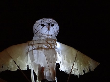 owl lantern in the Lamplighter Festival in Todmorden