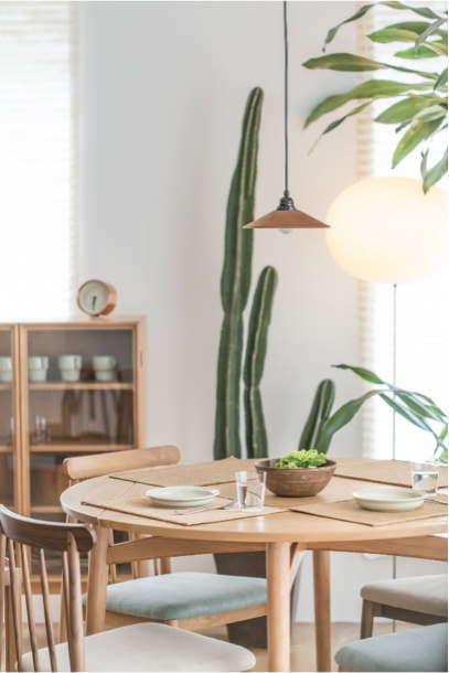 Dining table & chairs with a tall cactus in the background