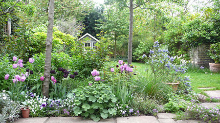 Well maintained cottage garden