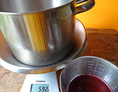 Weighing sugar to make redcurrant jelly