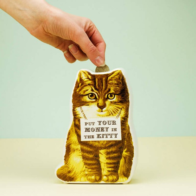 'Put your money in the kitty' money box