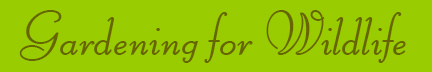'Gardening for Wildlife' blog post banner