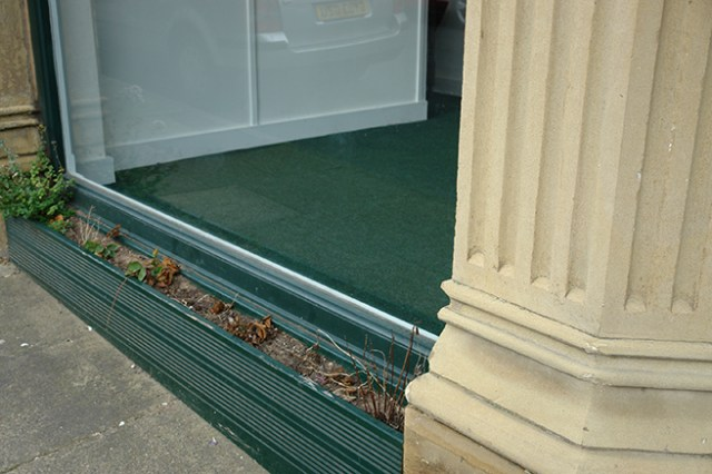 Neglected window box outside our new shop space | H is for Home