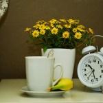 How many hours is a good night's sleep?