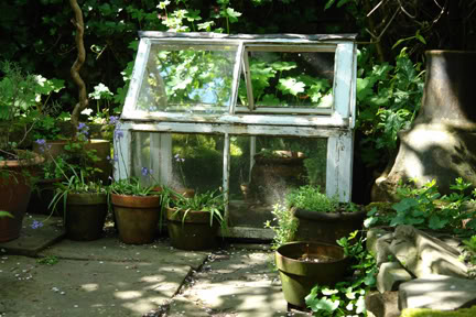 vintage mini-greenhouse | H is for Home