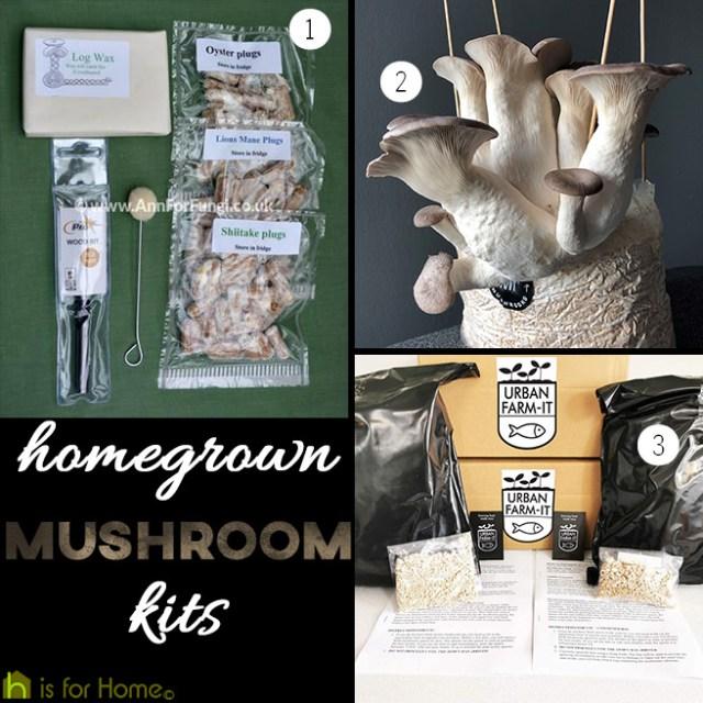 Homegrown mushroom kits