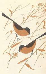 Charley Harper illustration of long tailed birds | H is for Home