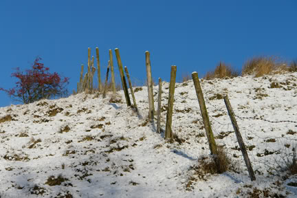Higgeldy piggeldy fence posts in a snowy landscape | H is for Home