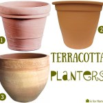 Price Points: Terracotta planters