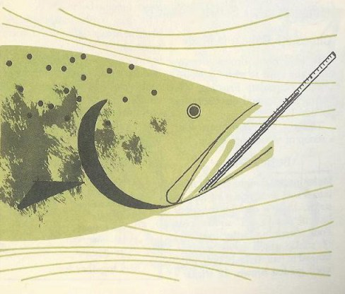 Charley Harper illustration of fish with a thermometer in its mouth