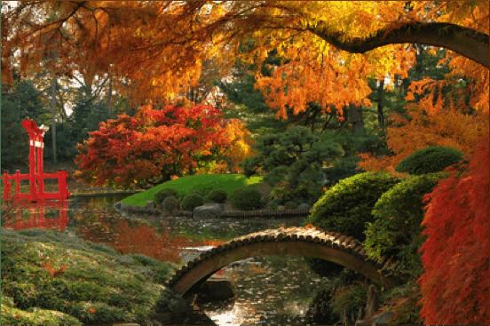Parque botanico de Brooklyn en Nueva York