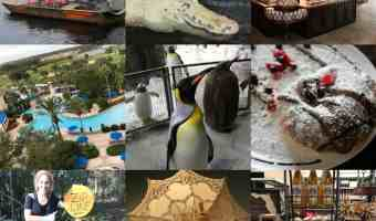 10 cosas que te sorprenderán cuando visites Kissimmee