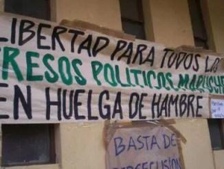 Declaración de nueva york: el mapuche