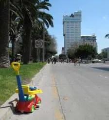 Tijuana blues: el camellón  de violeta