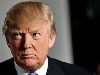 Contra trump: un llamado a la realidad