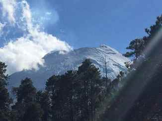 Arboles de navidad bajo el volcán popocatépetl