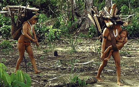 Hello world: Paraguay's Ayoreo Indians at risk from outside contact (2/2)