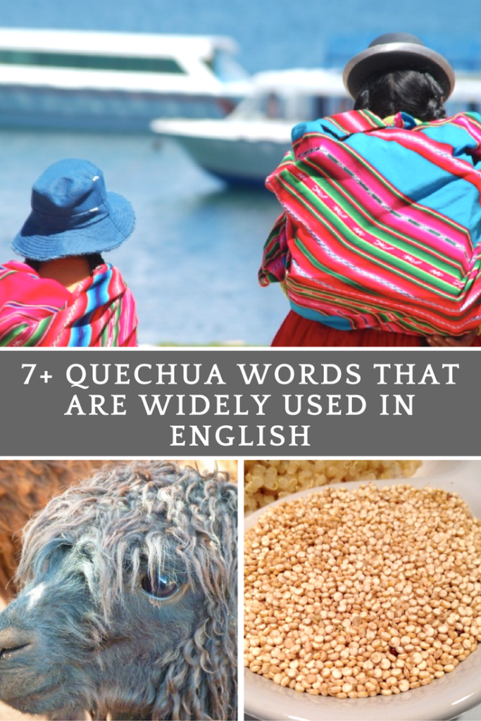 7+ Quechua Words That Are Widely Used In English