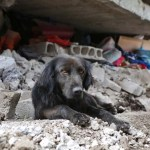 How You Can Help Ecuador Earthquake Victims