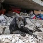 How You Can Help Ecuador Earthquake Victims