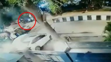Speed ​​havoc in Delhi: woman hits her pet dog with a BMW car, blames her pet dog for the accident (Watch Video)