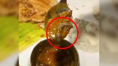 Famous restaurant in Delhi committed a big mistake, dead lizard served in Sambhar - Case registered (Watch Viral Video)