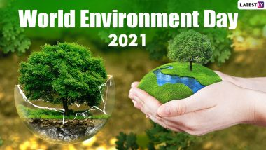 World Environment Day 2021: This year World Environment Day will be celebrated with the theme of 'Ecosystem Protection'.