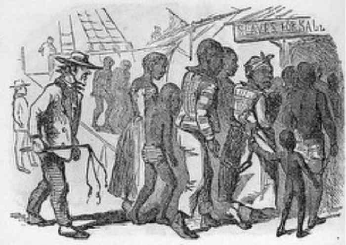 the slave trade in portugal history essay The trans atlantic slave trade- a history university of nebraska press we will write a custom essay sample on the atlantic slave trade specifically for you.