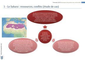 AFRIQUE TERMINALE L FICHE BAC (2)