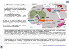 AFRIQUE TERMINALE L FICHE BAC (5)