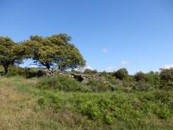 GR 36, sentier panoramique le Tour des cabanes, sentier d'Emilie - Le chemin du Fajas.