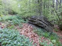 Piste du Bosc d'en Baillette à Le Vivier 66.