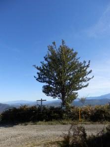 Poirier faux - amandier. Gr 36, Sentier des cabanes, Sentier d'Émilie - Le chemin du fajas, 3.