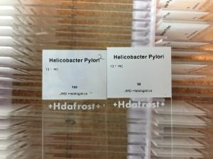 Helicobacter Pylori Slides