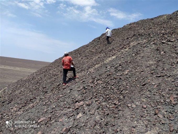 Unos arqueólogos estudian las líneas que componen el geoglifo del felino descubierto en Nazca.