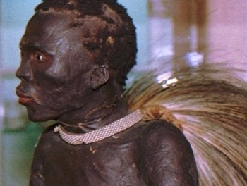 """La historia del """"Negro de Banyoles"""",un africano que fue disecado y expuesto como un animal en un museo de España"""