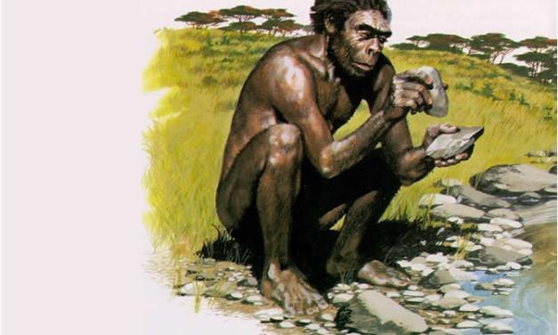 Los origenes africanos del hombre: De Lucy a Toumaï