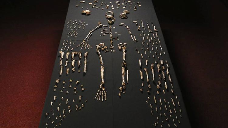 Anuncian el descubrimiento de una especie humana en África: Homo naledi