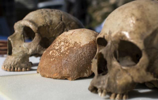 El Homo sapiens conquistó Europa desde varios frentes