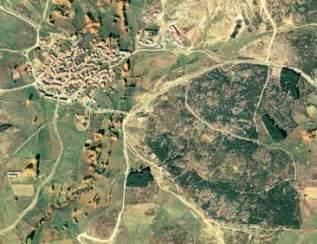Tomo+II.+Futuro+de+los+bosques+y+Mapa+Forestal+_Página_082_Imagen_0002