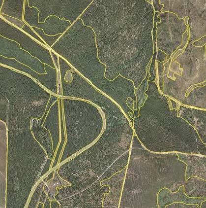 Tomo+II.+Futuro+de+los+bosques+y+Mapa+Forestal+_Página_113_Imagen_0001