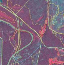 Tomo+II.+Futuro+de+los+bosques+y+Mapa+Forestal+_Página_113_Imagen_0002