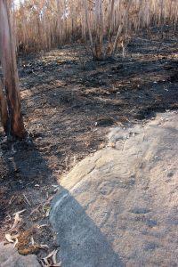 O lume danou varias estacións de petróglifos en Villestro / A Rula