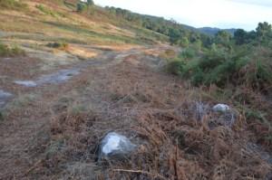 Desbroce realizado moi preto do conxunto rupestre do Pornedo / Monte Pituco