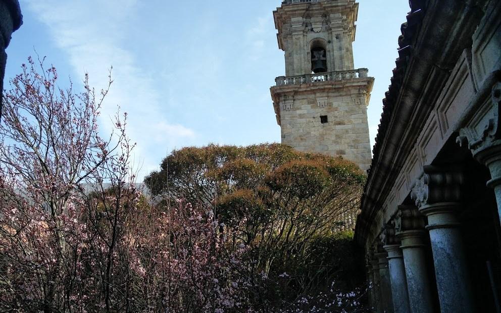 Mosteiro de Oia. Vistas da torre da Igrexa desde o claustro gótico / X.S.