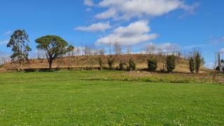 Vista dende os herbais no castro dos Montes Claros en Laracha / foto Xoán Parada