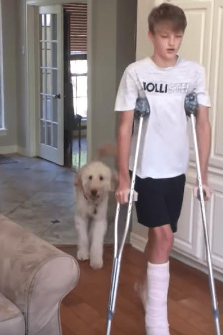 """Cachorro passeia no quarto mancando para zombar seu """"irmão"""" andando de muletas 1"""
