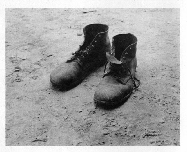 walker evans shoes
